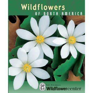 wildflower-knowledge-cards
