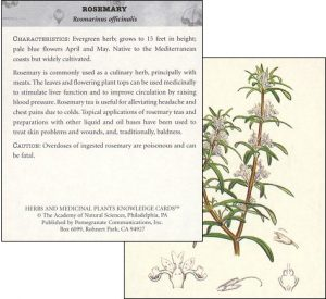 herbal knowledge cards