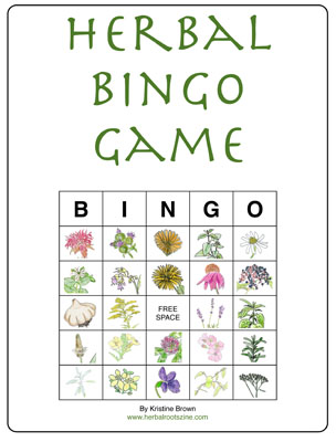 picture about Spring Bingo Game Printable referred to as Natural Roots zine » Freebies