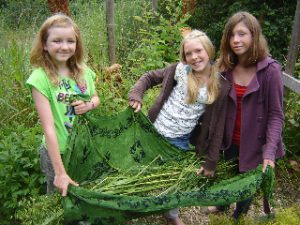 Oatstraw harvest and herbal girls