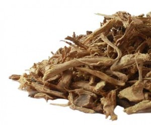 blackberry_root