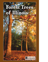 forest-trees-of-illiois