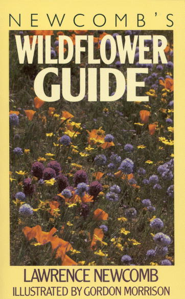 newcombs_wildflower_guide
