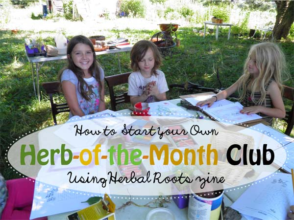 Herb-of-the-month-club