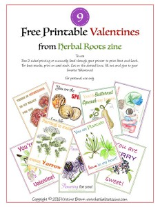 2016 herbal valentines cover