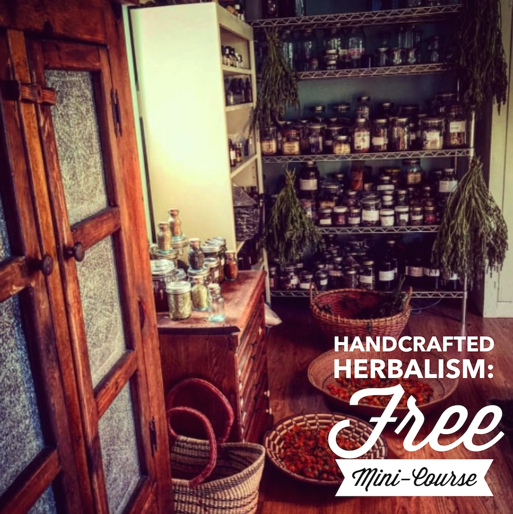 Handcrafted Herbalism Free Mini-Course