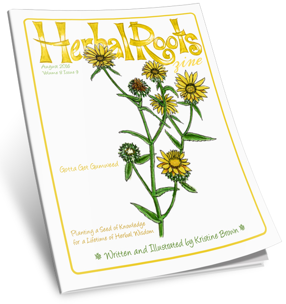 Aug-16-Gumweed