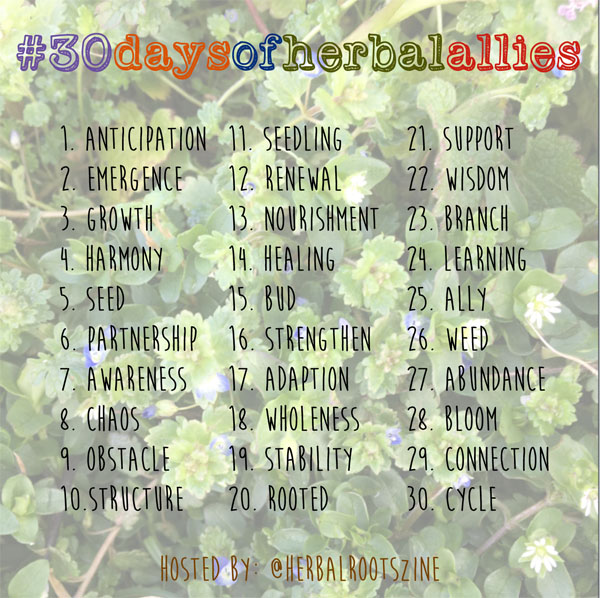 30-days-of-herbal-allies
