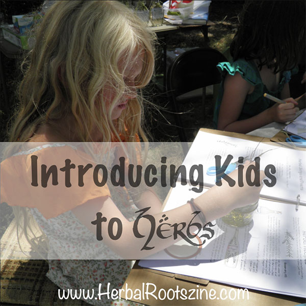 Introducing Your Kids to Herbs